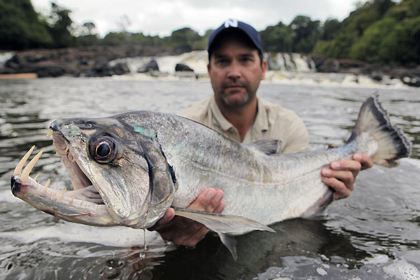 Monster Fish: In Search of the Last River Giants